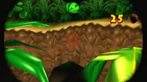 Kong Battle Glitch