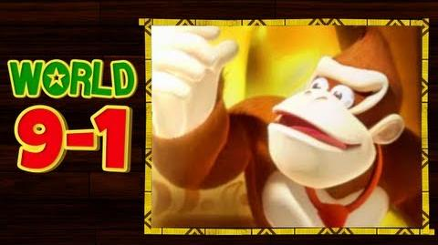 Donkey Kong Country Returns 3D - 9-1 Crushin' Columns All Puzzle Pieces