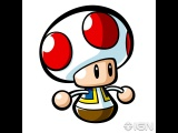 Mlm toad