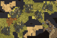 Group of Sunken Forest