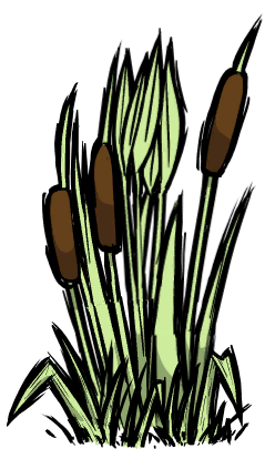 Archivo:Reeds.png