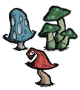 File:Mushroom Group.png