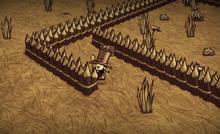 Bones Trap 1.png
