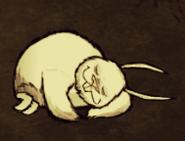 Sleeping Bunnyman