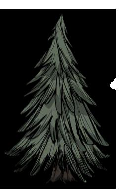 樹/常青樹