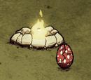 Tallbird Egg