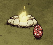 File:Hatching Tallbird Egg too close to fire during day.png