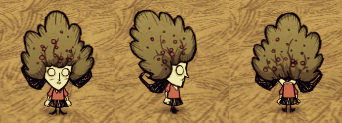 Bush Hat Willow.png