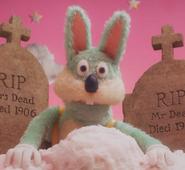 RabbitDHMIS3