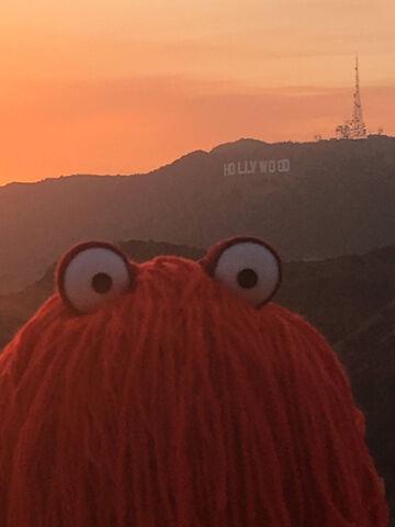 File:Red Guy behind sunset.jpg