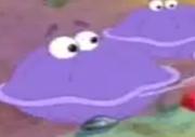 Big clam