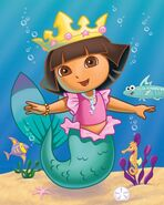 DTE Mermaid CVR FIN