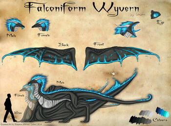 Falconiform Refsheet