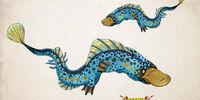 Banebill Platypus