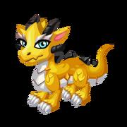 Neo Yellow Juvenile