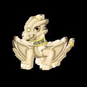 Ivory Juvenile
