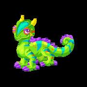 Chameleon Adult