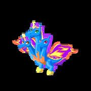 Tricorn Adult