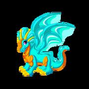 Aquamarine Adult