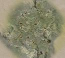 Emerald Graves