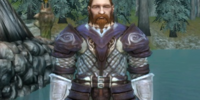 Dwarven Medium armor set