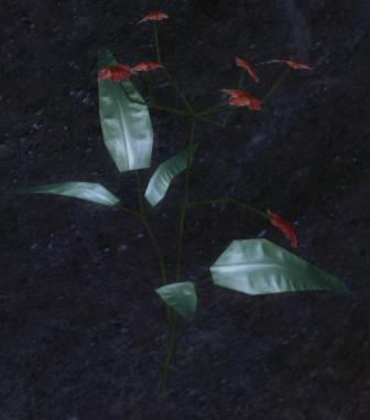 File:Blood Lotus (screenshot).png