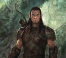 Dalish Elf Origin