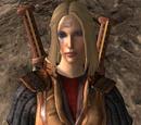 Guardian of Enasalin