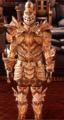 Hirol Defense Armor.png