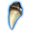 Dragon's Tooth icon.png