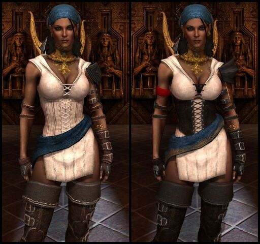 File:DA2 Threads of the Eastern Seas - Before and After Comparison - Isabela companion armor.jpg