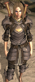 Commisioned Plate Armor.png