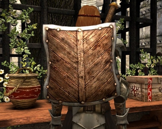 File:DA2 Reinforced Shield - warrior starting gear.jpg