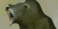Codex entry: Bear (Inquisition)