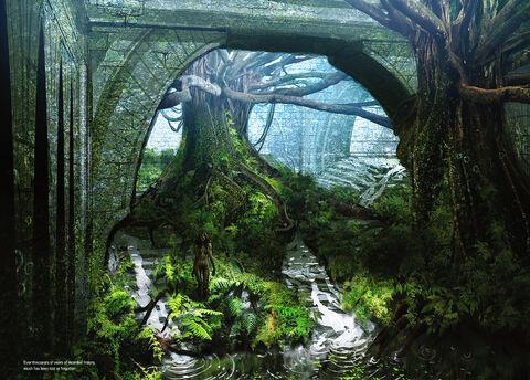 File:Brecilian forest.jpg
