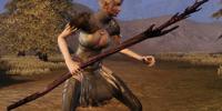Flemeth's Broomstick