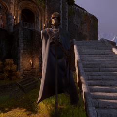Grey warden banner with crown