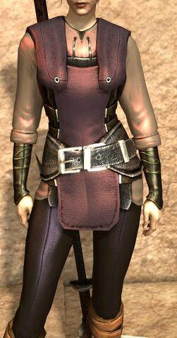 File:Heavy Velvet Robes (Dragon Age II).jpg