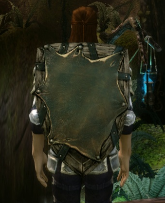 File:Swiftrunner's Shield.png