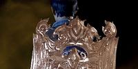 Orlesian Lion Shield