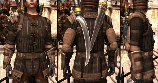 File:DA2 Rogue Armor - Superior Rogue Armor - Enchanted Rogue Armor - generic chestpiece.jpg