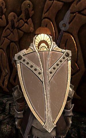 File:DA2 Hearth Shield - round shield - act 3.jpg