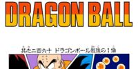 The Last Dragon Ball (manga chapter)