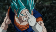 Vegetto SSDSS.png