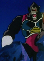 Great Ape fasha.png