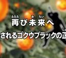 De volta para o futuro! A identidade de Goku Black é revelada!