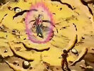 Dbz249(for dbzf.ten.lt) 20120505-11593661