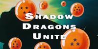 Shadow Dragons Unite