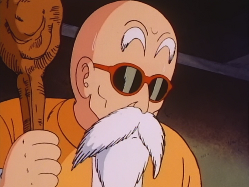 File:Roshi assessing the situation.png