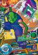 Piccolo&SlugCard